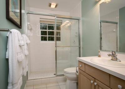 Guest Bath (1)